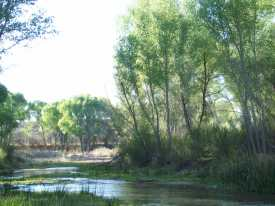 San Pedro River retreat