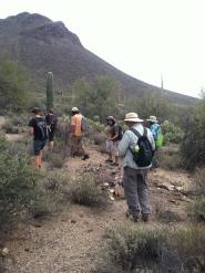 Shamanic desert walk