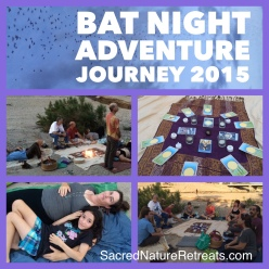 Bat night #4