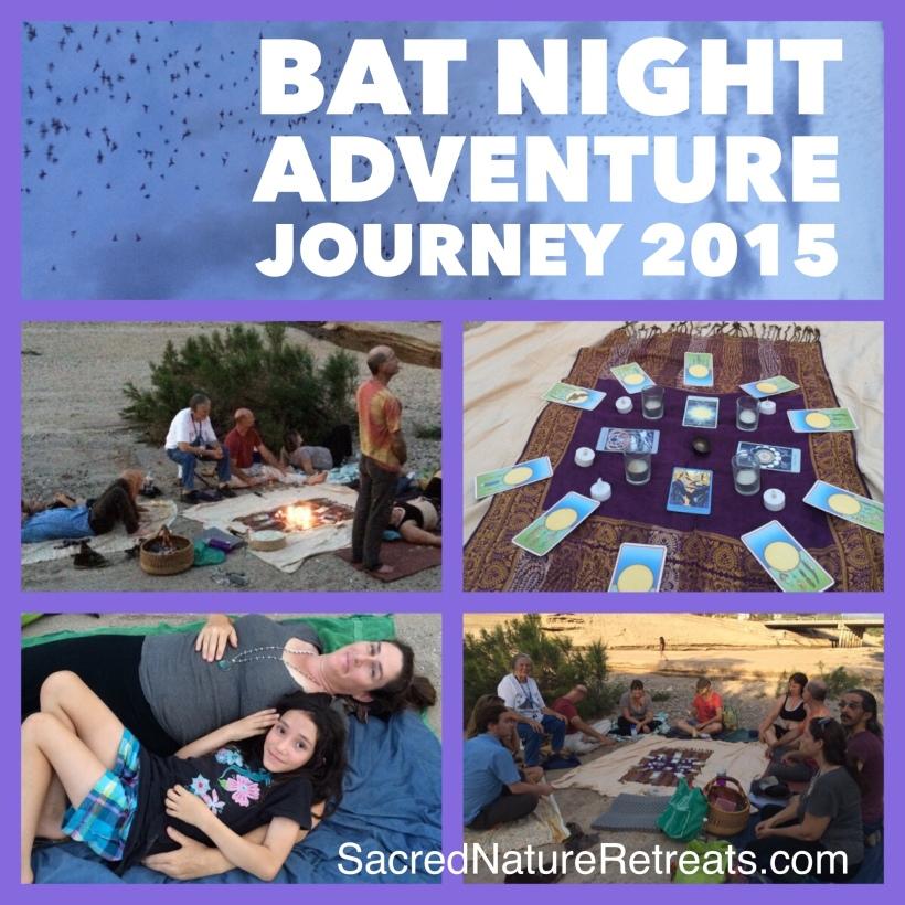 BatNight2015WS